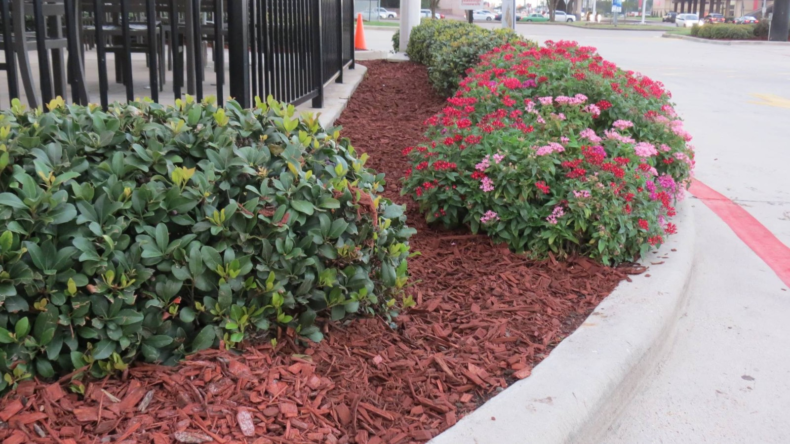 Welcome To Number One Lawn Service And Landscaping In Beaumont Texas 409 745 6996
